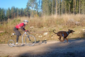 Kickbike_Cross_MAX_mushing_race_Kaitsu_opt